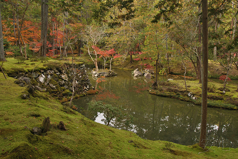 pond, Japan (Saihodji)