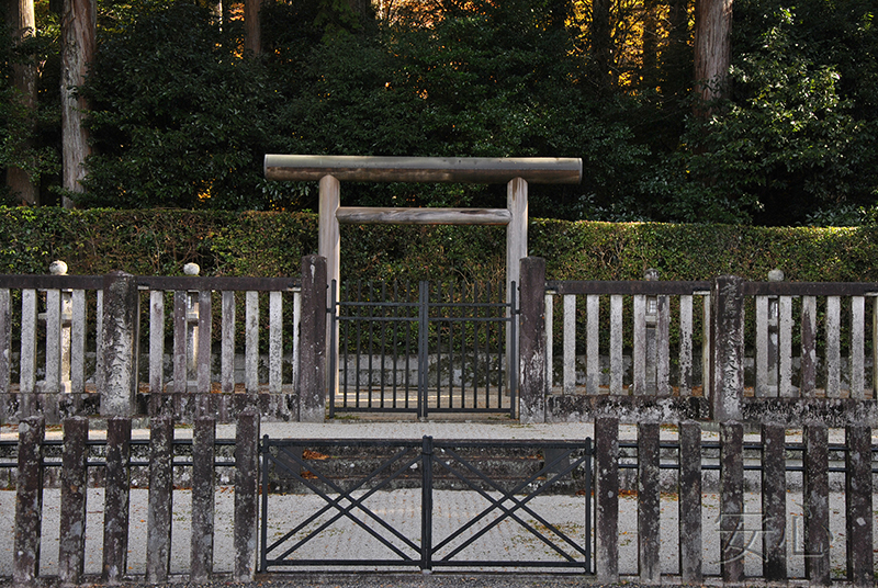 Torii Gate of bamboo, Japan (Kennin - ji)